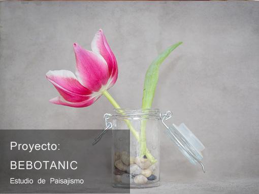Bebotanic
