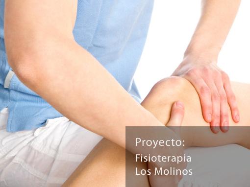 Fisioterapia Los Molinos
